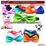Wholesale Custom Ties Pets Cat Dog Ties Mini Tie Puppy Neck Acccessory Bright Colour Collar Bottle Tie (B8403)